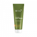 Siberian Wellness. Anti-Odor Foot Cream, 75 ml